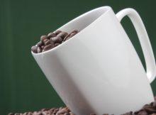 coffee-bean-cup