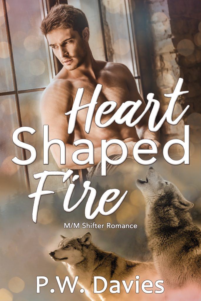 Heart Shaped Fire book cover